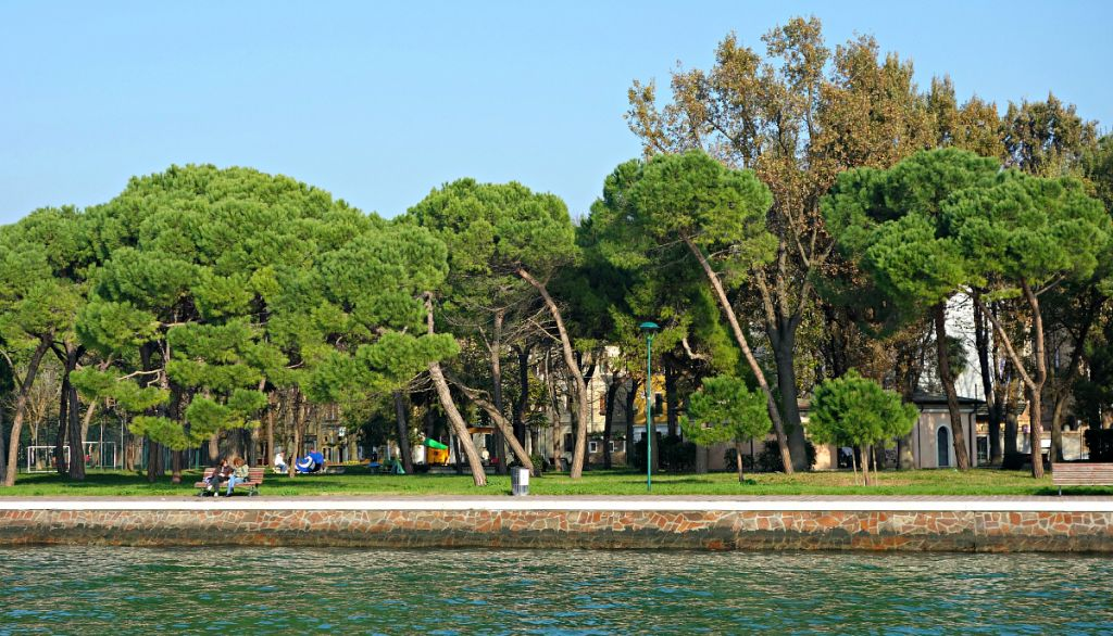 Venice Giardini. Photo: Jimmy Pierce.